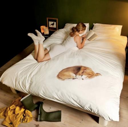 snurk dekbed-snurk-hond